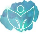 vibrant health soul code