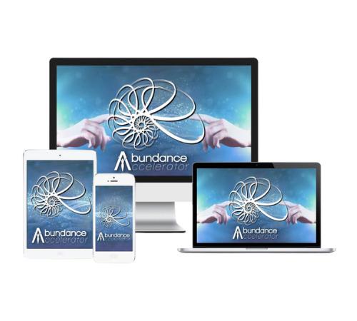 abundance accelerator